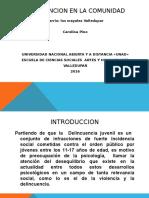 Diapositivas Intervencion en La Comunidad