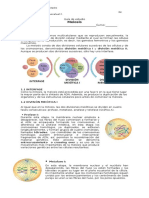 Guía de Estudio Biologia Meiosis