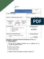 prueba coefi de lenguaje y comunicacion 5° basico