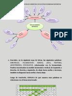 Biologia 6to Parcial - Guerrero Mayra