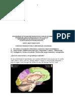 54331592 Curso Neurolectura y Aprendizaje Acelerado 08 07