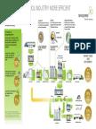 Infographic Plant Power