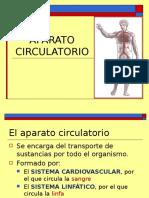 Aparato_circulatorio Clase 4 Final