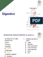 Aparato_Digestivo Clase 2