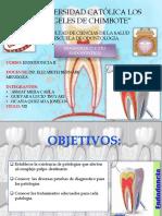 DX en Endodoncia