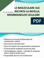 2. Bazele moleculare ale electricitatii.pdf