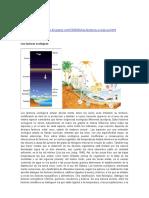 Factores Ecologicos BIOG8 2011