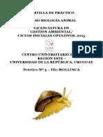 CARTILLA MOLLUSCA