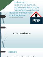 Toxicodinâmica