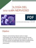 embriología SNC
