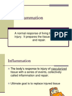 2011Inflammation.pdf