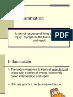 2011 Inflammation