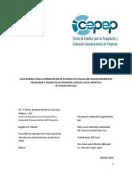 Guía General PPIs - México