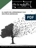 El campo del aprendizaje. Alicia Fernandez Entrevista