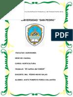 EL cultivo del CAQUI  Alumno  Justo Perea Collantes.docx