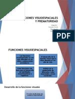 Funciones Visuoespaciales y Prematuridad