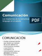 Comunicación y Afasia