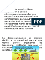 remediacion microbiana