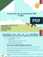 Funciones Pni y Ges