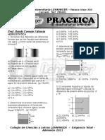(09) Randy Cornejo - Fisica II