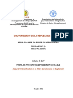 NEPAD pour Gabon