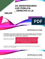 Principios Orientadores de La Salud Publica Final