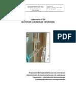 Guía N° 10 Gestión del cuidado 2016.pdf
