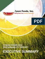 2012 Sustainability Report Executive Summary