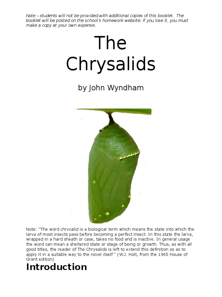 what is the chrysalids about