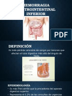 Hemorragia Gastrointestinal Inferior