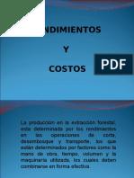 Rendimientos y Costos.ppt