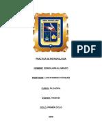 10420123 Antro Polo Gia