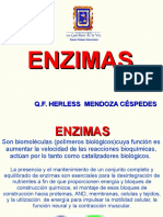 Clase 09 Enzimas