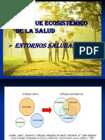 6  enfoque ecosistemico de la salud