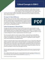 APA DSM Cultural Concepts in DSM 5