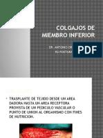 DR Antonio Orellana Colgajos de Miembro Inferior