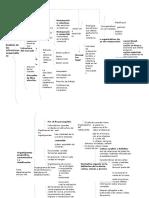 Análisis de las estructuras organizativas