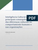 Inteligência Cultural_Cristiano Leal_Cristina Castro
