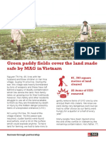 Green paddy fields made safe by MAG