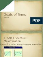 Goals of Firms