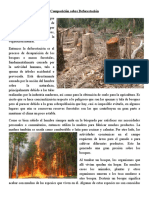 Deforestación composición