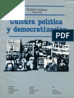 Cultura y democratización