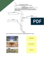 prueba 2° historia zonas naturales