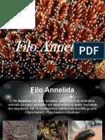 aneldios-131003210631-phpapp02