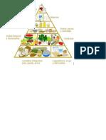 Cuadro Grupos Basicos de Alimentacion