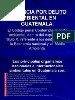 4.DERECHO AMBIENTAL (Pres Guatemala).ppt