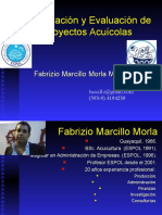 TopicoProyectos01.ppt