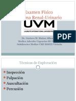 Exploración Física de urología