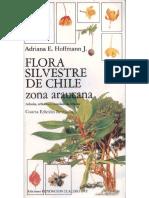 Flora Silvestre de Chile Zona Araucana