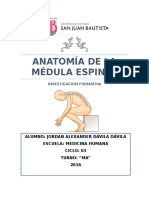 Médula Espinal Jordan Dávila